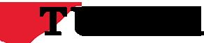 Přiložené obrázky: tudor-logo-accordion.png