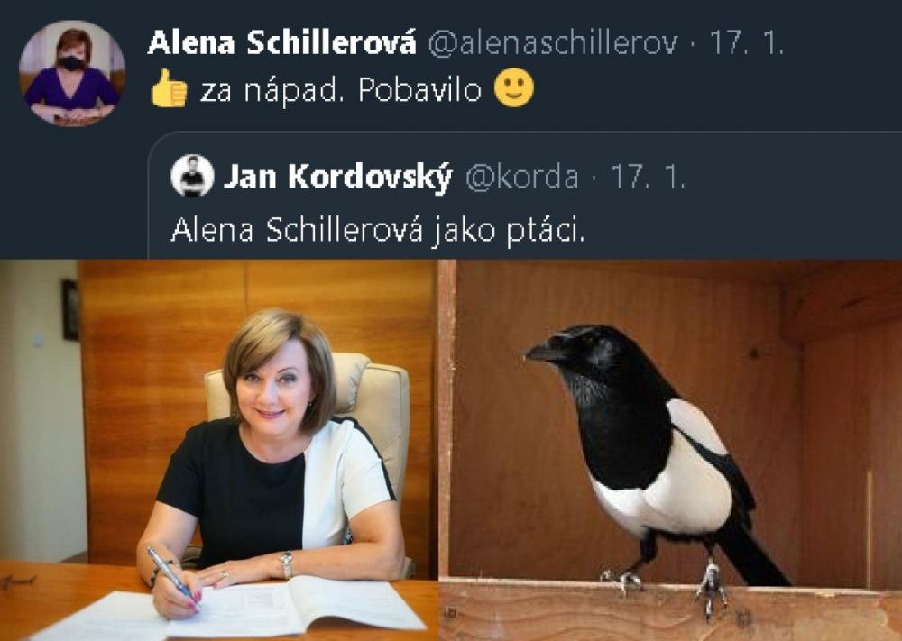 Jak_se_asi_rekne_latinsky_straka_otaznik.jpg