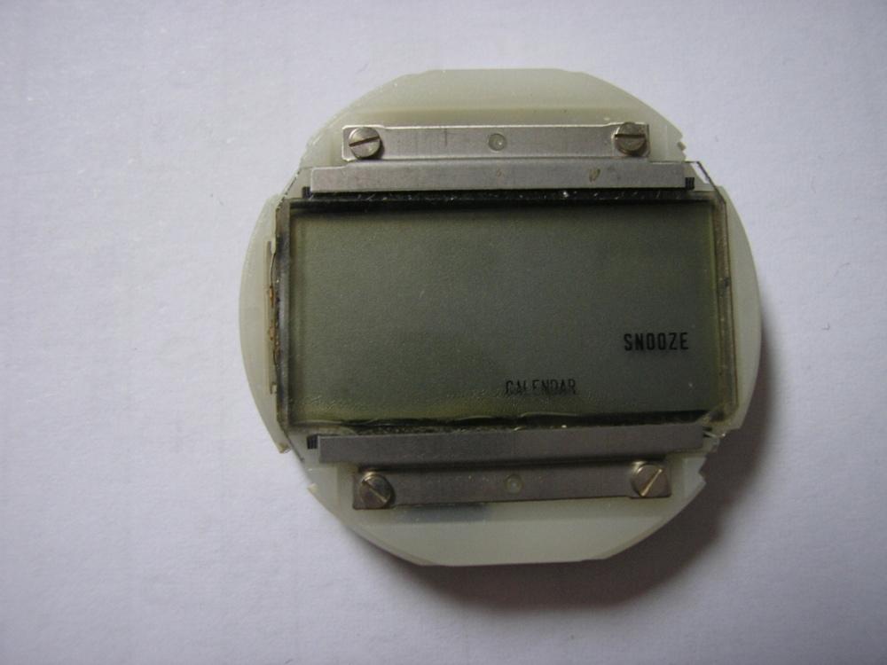 P1016345.JPG